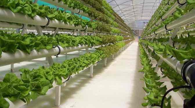 Công nghiệp hóa Nông nghiệp